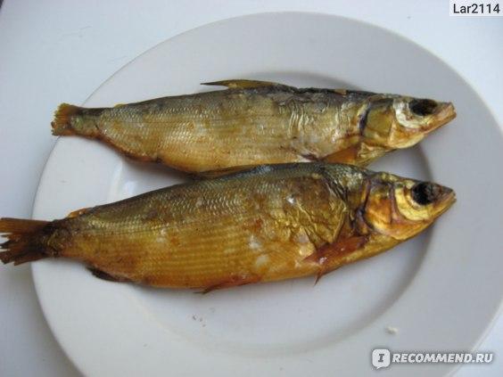 Рыба Холодного копчения Пелядь фото