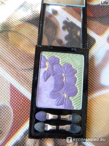 Тени для век Vivienne sabo Violettes de Montmartre фото
