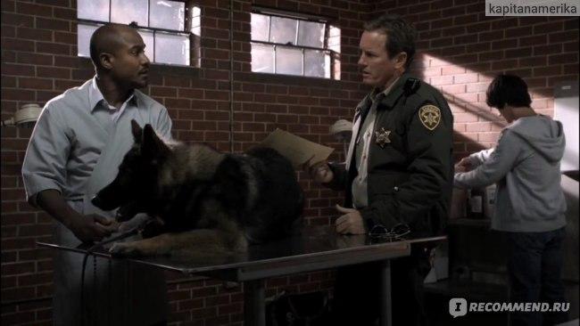 Дитон,шериф Стилински и Скотт