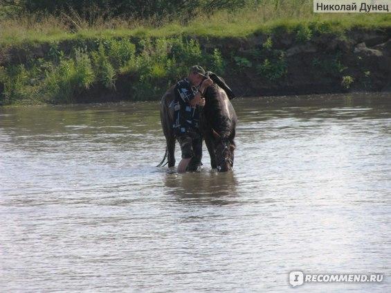 Вода в Ануе чистейшая, плохую воду казачий конь пить не будет