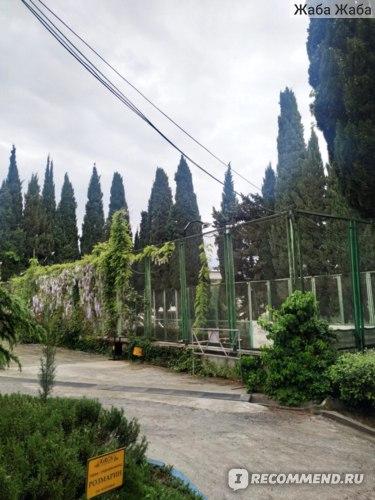 теннисный корт в санатории Кирова