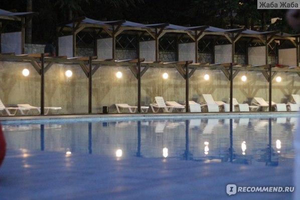 бассейн и лежаки