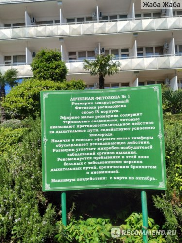 санаторий Кирова в Ялте 2021 год