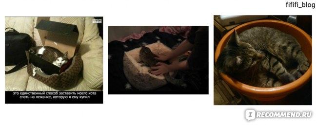 Домик для кошки Икеа Лурвиг (Lurvig) фото