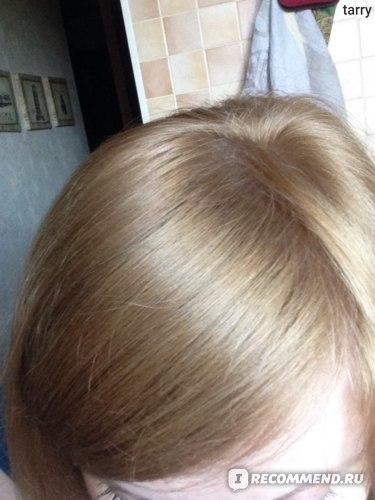 Шампунь Planeta Organica Интенсивный против выпадения волос на свежем соке чёрной камчатской берёзы The Secrets of Kamchatka фото