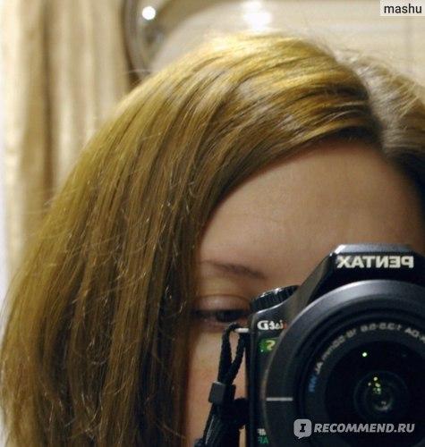 Крем-краска для волос Logona   фото