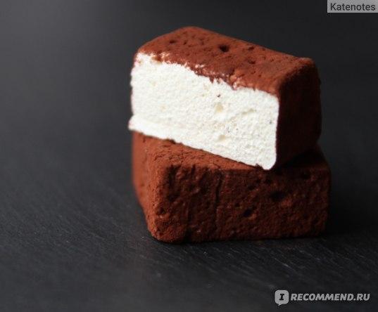 Какао-порошок Cacao Barry алкализированный Extra Brute фото