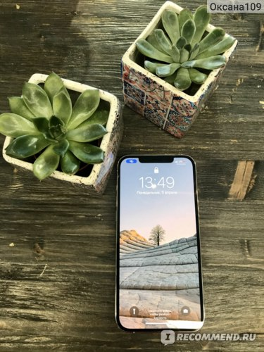 Смартфон Apple iPhone 12 Pro Max фото
