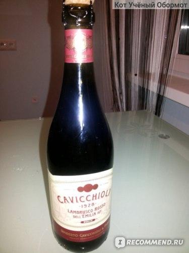 Вино игристое красное сладкое слабоалкогольное Umberto Cavicchioli  & Figli Ламбруско Россо дель Эмилия фото