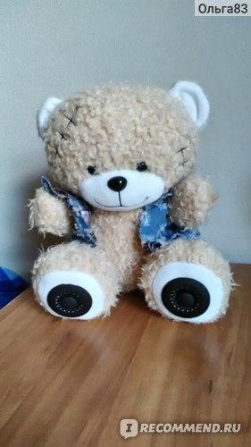 Портативная аудиосистема Texet TPA-3009 Bear фото