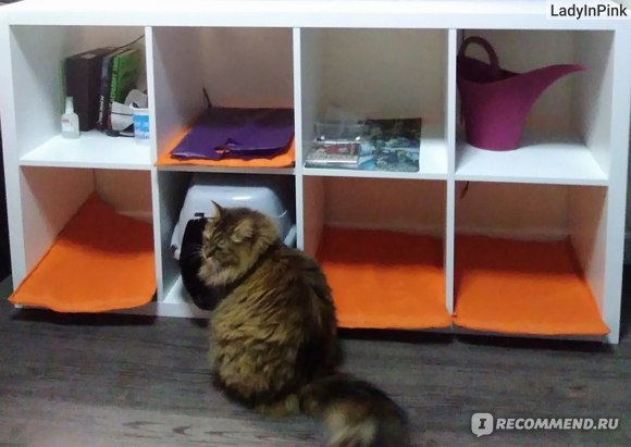 Кошкин четырехкомнатный дом