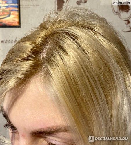 Волосы до использования сухого шампуня