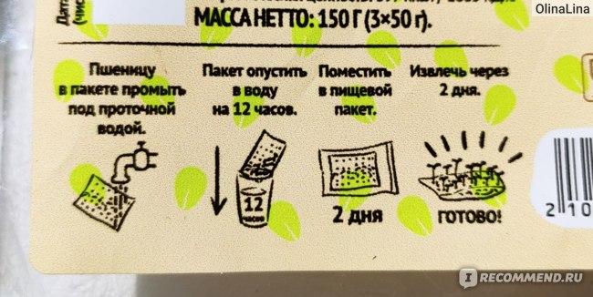 """Пшеница для проращивания ВкусВилл / Избёнка Сорт Элитная """"Злата""""  фото"""