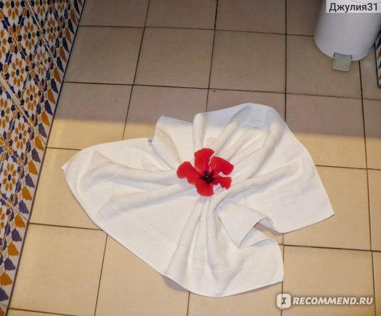 Le Hammamet 4* HOTEL & SPA (ex. Dessole, Тунис). Качество уборки. Смотрите не на цветы, а на пол за полотенцем.