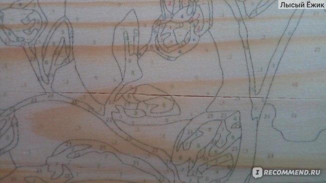 Картина по номерам по дереву Фрея Брызги лета, арт. PKW-1-61 фото