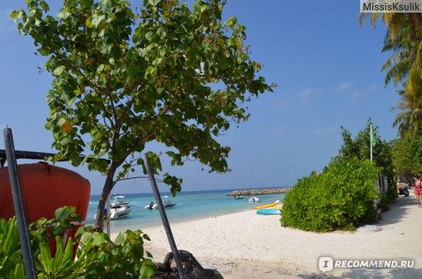Остров Маафуши (Maafushi) Мальдивы фото