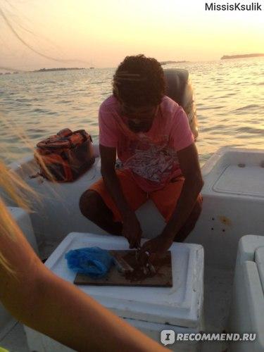 Месный житель готовит наживку из тунца