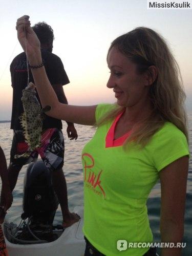 Вот такую интересную рыбку поймали