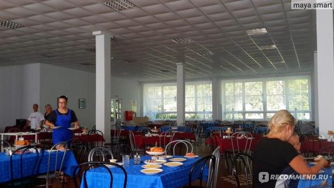 Зал большой, просторный,а заполнено всегда только 2-3 ряда столиков...официантки-студентки