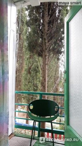 Зеленый стульчик на балконе, похожий на лягушонка :)