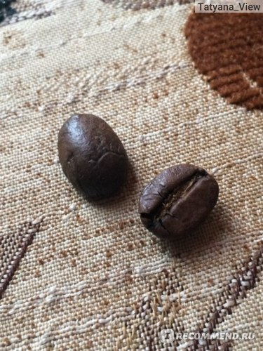 Кофе в зёрнах Династия кофе Марагоджип никарагуа фото