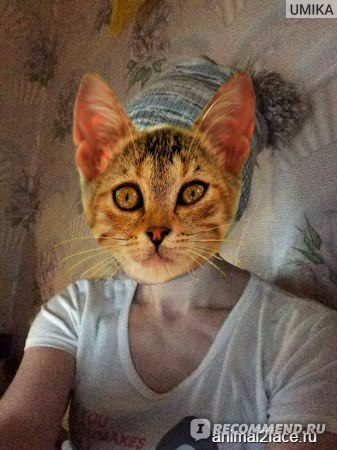 Фото с плохим освещением на IPhone 5s