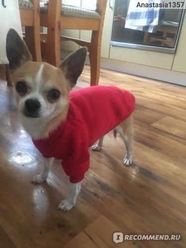 Утепленный свитер