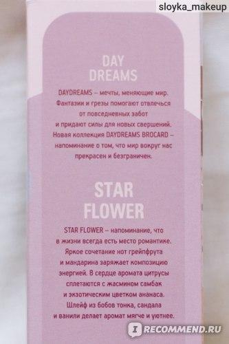 Brocard Star Flower  фото