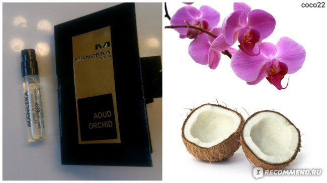 Mancera Aoud Orchid фото