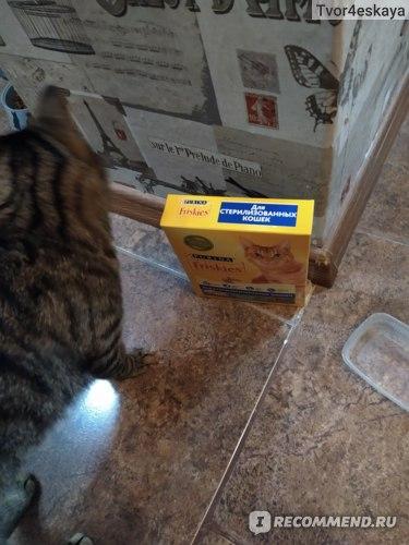 Корм для кошек Friskies Purina стерилизованных, с кроликом и полезными овощами