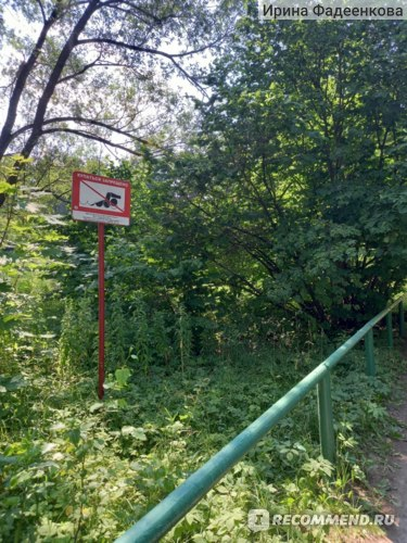"Парк ""Серебряный бор"", Москва фото"