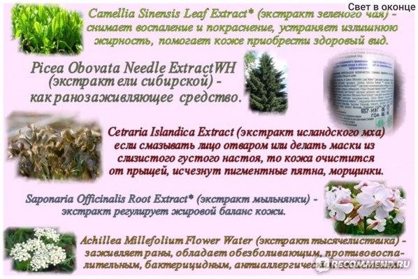 Очищающий тоник Natura Siberica для жирной и комбинированной кожи фото