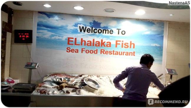 Зона с охлажденными морепродуктами
