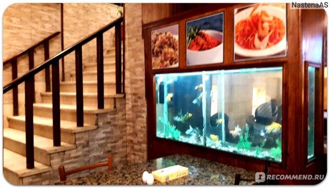 Аквариум и лестница на второй этаж