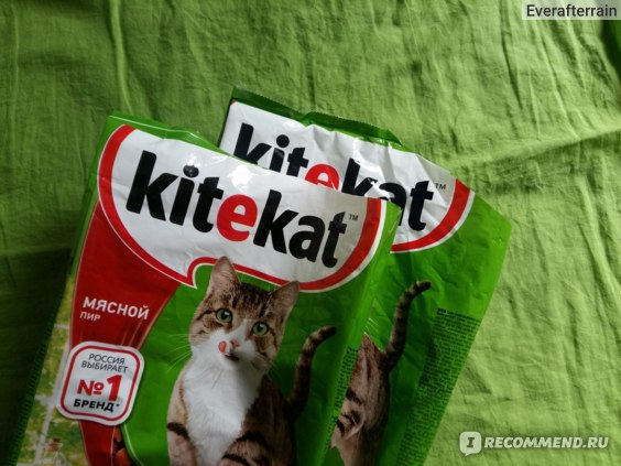 Корм для кошек Kitekat Мясной пир отзывы