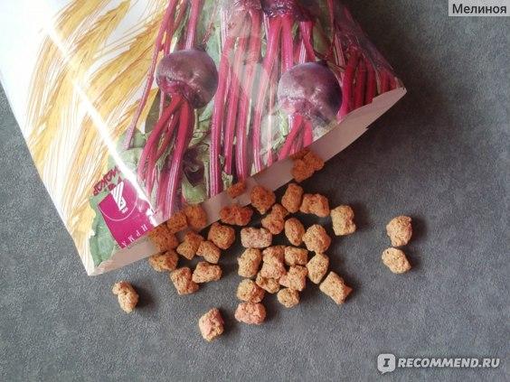 Лито Пшеничные отруби с кальцием и свеклой БАД Биокор фото