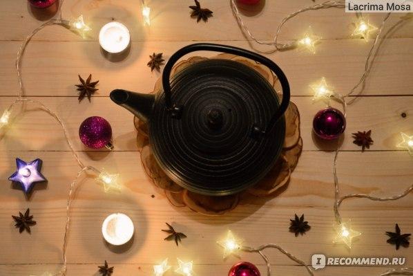 Чугунный чайник Hot Contents Угольная Черепаха фото