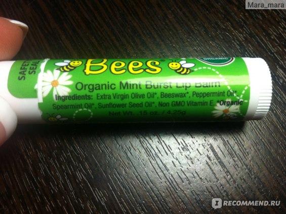 Бальзам для губ Madre Bees  Hemp, Organic Mint Burst Lip Balm с ароматом мяты фото