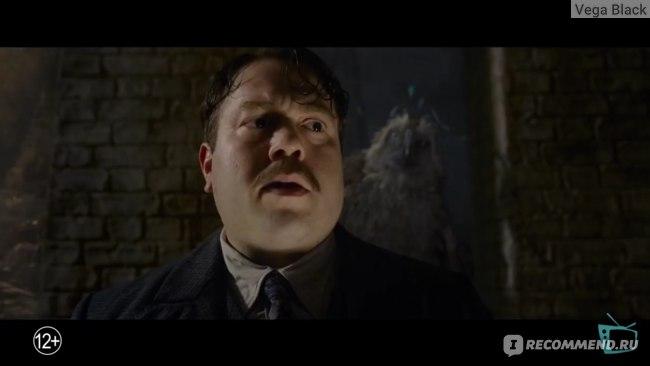 Все мы немного испуганный Ковальски