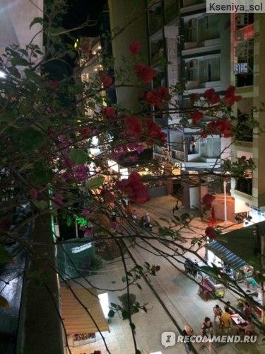 Sunny Hotel *** Nha Trang 3*, Вьетнам, Нья-Чанг фото