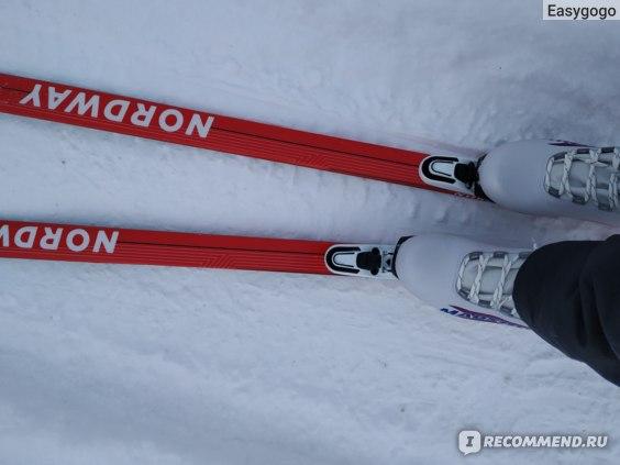 Лыжи Nordway Детские XC Combi Puls Jr фото
