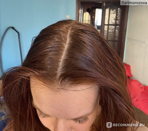 Шампунь Дары природы Для жирных волос и кожи головы фото