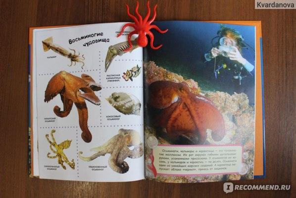 Подводный мир. Лучшая энциклопедия в картинках для малышей. Издательство Росмэн фото