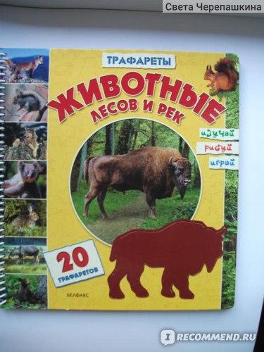 """Книга-трафарет """"Животные лесов и рек""""., Издательство Белфакс фото"""