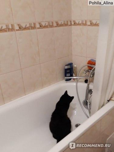 залезть в ванну и сидеть с заинтересованным видом