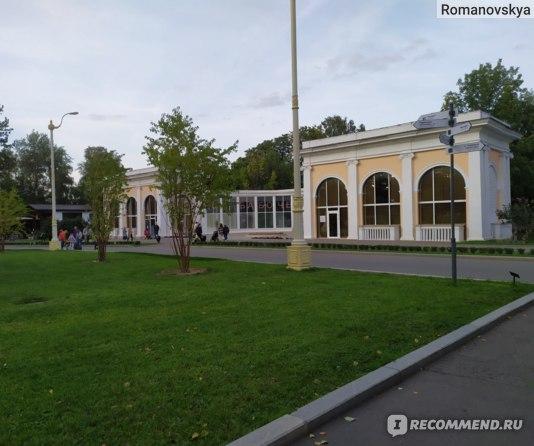 Московский Дом Бабочек, Москва