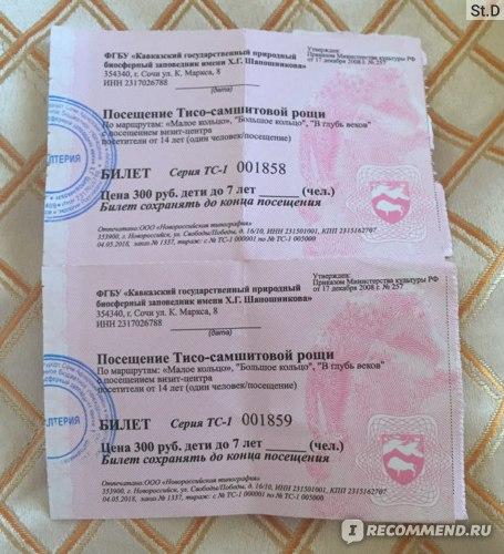 Россия, Краснодарский край, Хостинский район, пос. Хоста,Тисо-самшитовая роща фото