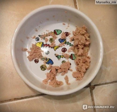 Корм для кошек Freshpet Ролл с кроликом и сливками фото