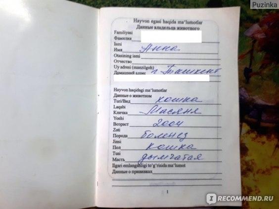 паспорт кошки