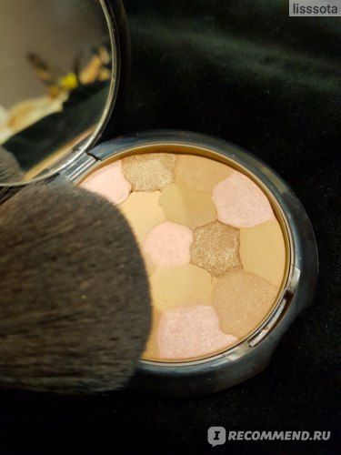 Пудра Guerlain Terracotta Light Sheer Bronzing Powder фото